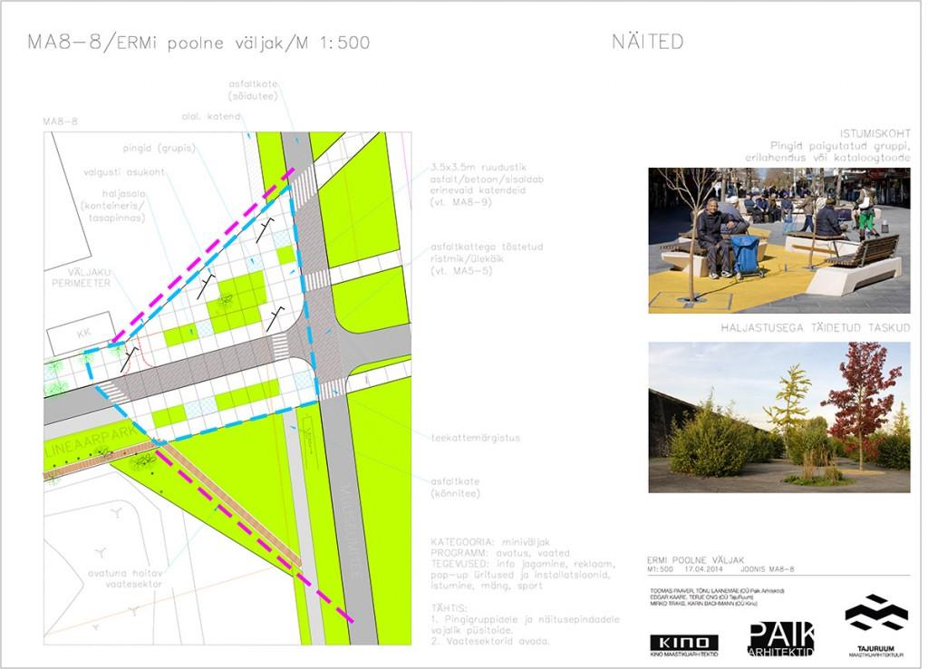 Roosi_tn_eskiisprojekt0-2-35 copy